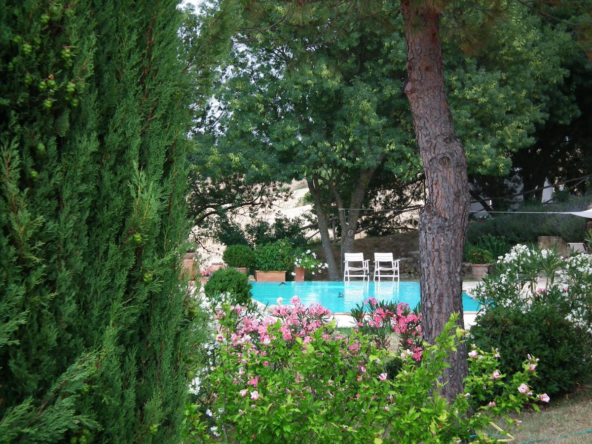 Pool 11